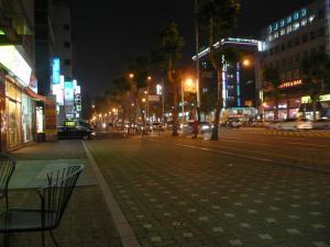 夜のホテル前の道路で