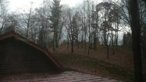 旧宅から眺めた歌碑の森