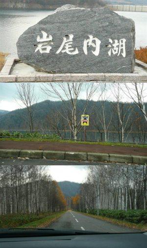 岩尾内湖、岩尾内ダム
