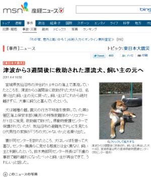 津波から3週間後に救助された漂流犬、飼い主の元へ