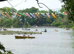 善福寺公園散策