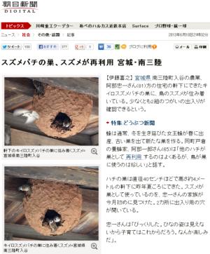 スズメバチの巣、スズメが再利用