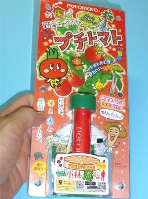 ペットボトルで野菜を作ろうプチトマト