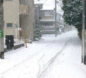 東京45年ぶりの大雪