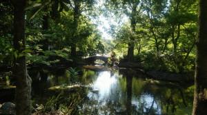 休日の井の頭公園